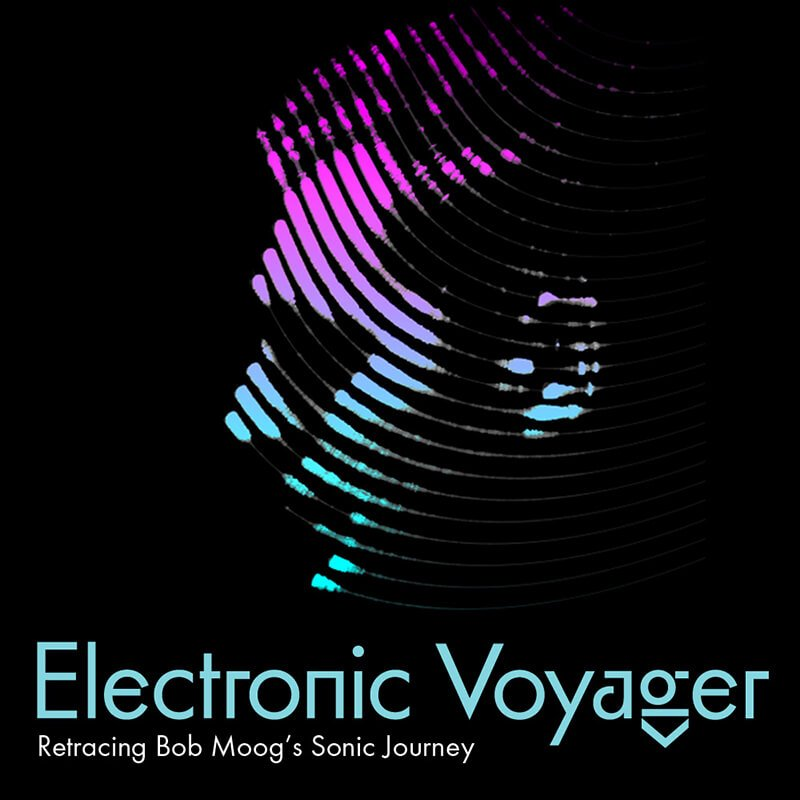 Electronic Voyager film poster